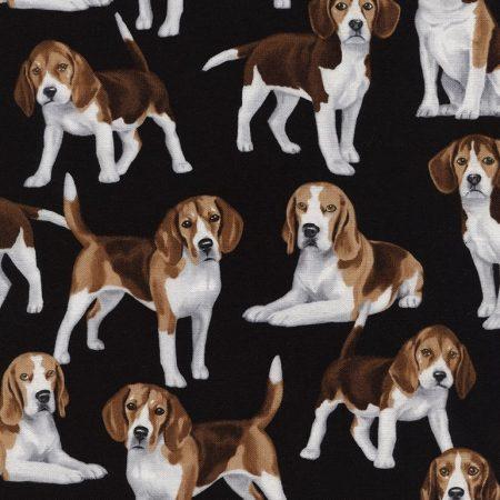 Quiltstof Katoen Dogs Beagles Honden Beagles. Verkoop per 25 cm